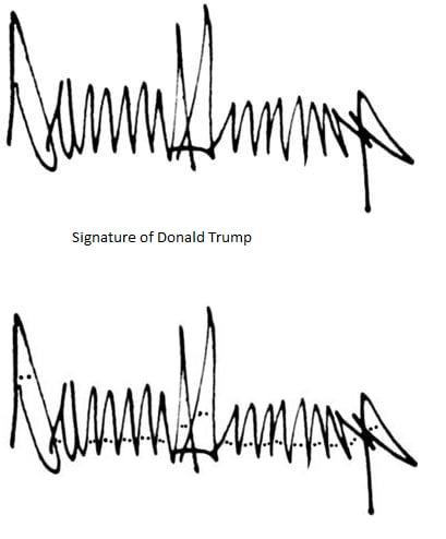 Michelle Dresbold analyzes Donald Trump's signature and says it is  'phallic' | Daily Mail Online