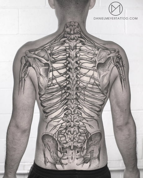 human body diagram tattoo my back anatomy tattoo 9gag  my back anatomy tattoo 9gag