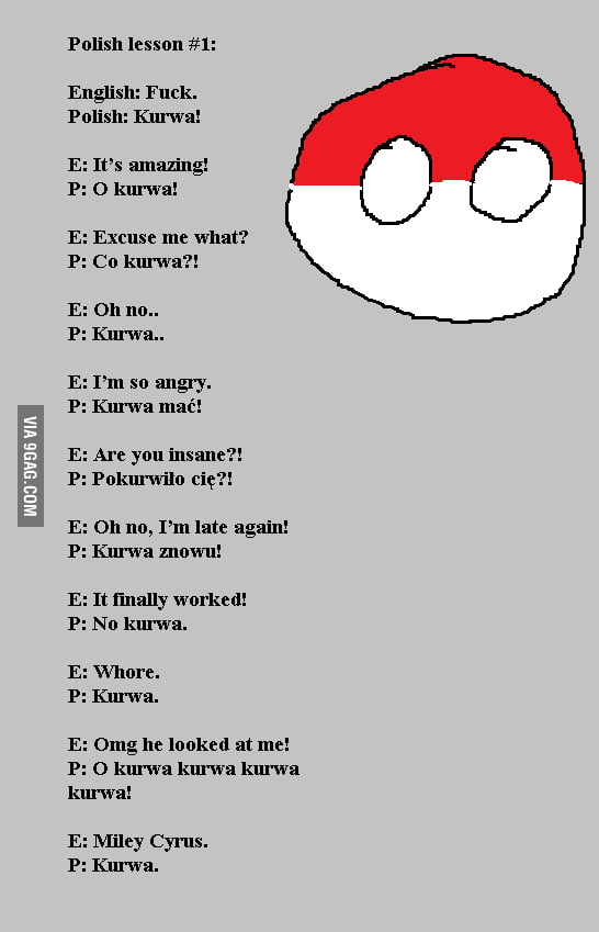 learn polish in 10 seconds   9gag