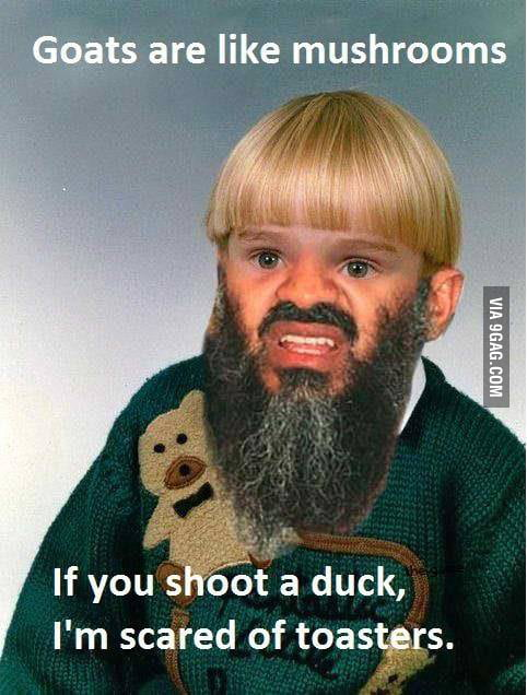 By far the most random picture I have seen on the internet ...