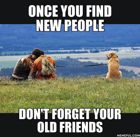 find old friends and meet new