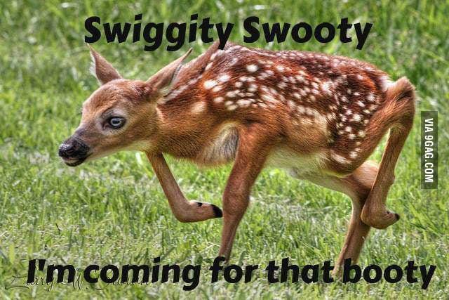 Swiggity Swooty!