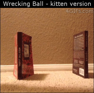 Wrecking Ball (Kitten Version)