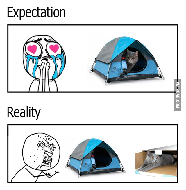 Tiny tent and cat logic  sc 1 st  9Gag & Tiny tent and cat logic - 9GAG
