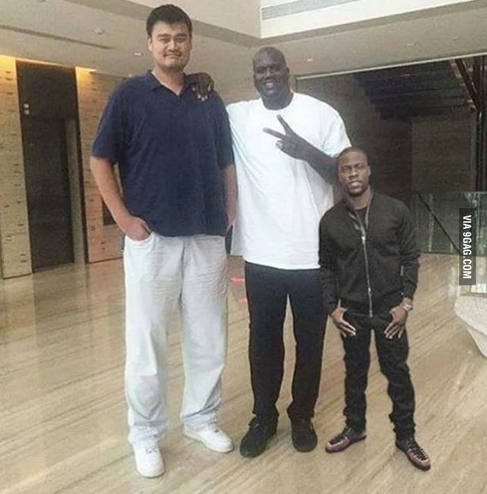 The differences between Yao Ming, Shaquille O'Neal and ...