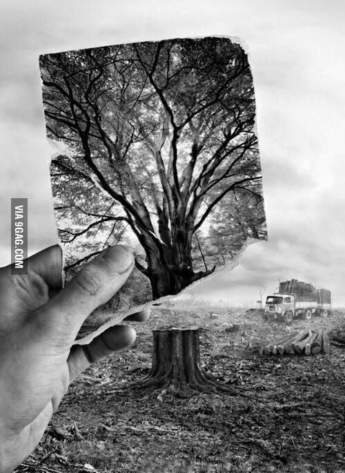 Deep Pictures With Meaning