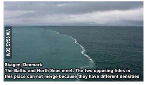 where 2 oceans meet but dont mix