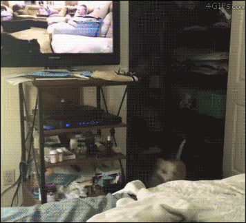 When your favorite show start.