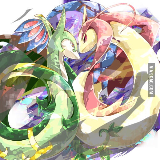 I think this is the most beautiful pokemon shipping ever - The most adorable pokemon ...