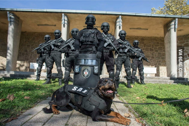 To the guys with Danish and Taiwan Special Forces, I present