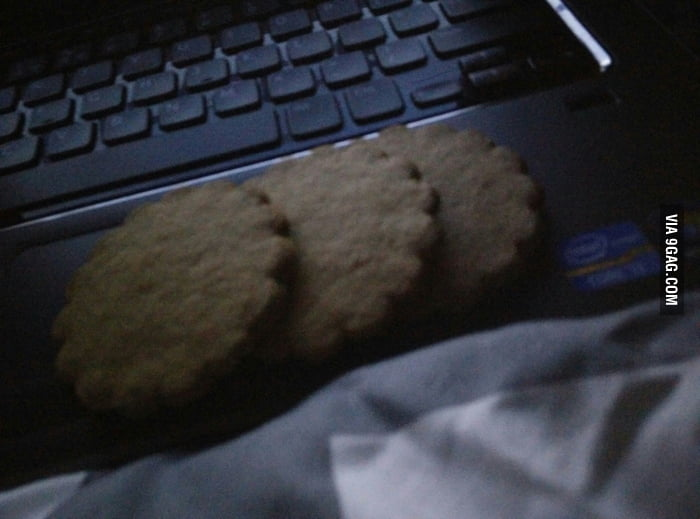 I forgot to turn cookies off on my laptop... - 9GAG