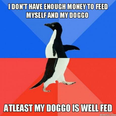 Always put doggo before yourself