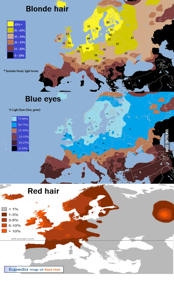Red Hair Blonde Hair Blue Eyes In Europe 9gag