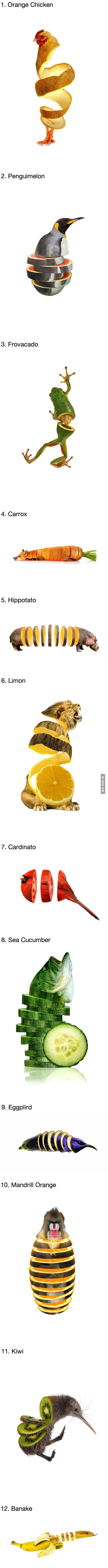 12 Strange Animals Photoshopped as Fruits and Vegetables