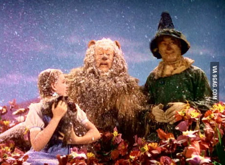 In This Shot From The Wizard Of Oz Fake Snow Is Actually Pure Chrysotile Asbestos Fibers