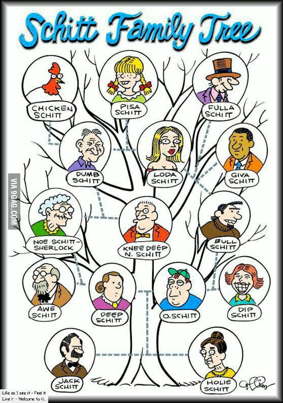 schitt family tree 9gag