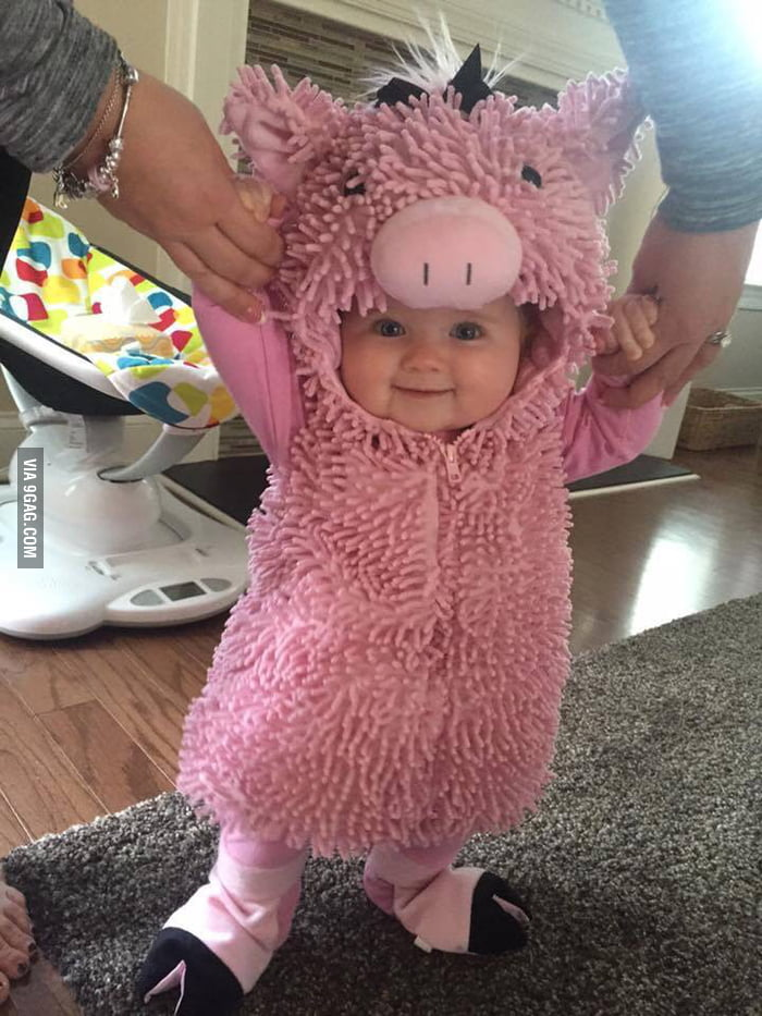 Are you sad? Look at this pig