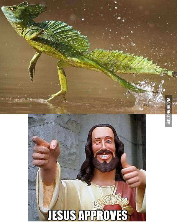 Jesus aproves