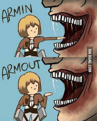 Armin, Armout