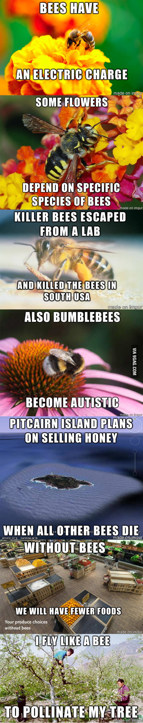 In China bees are already extinct...
