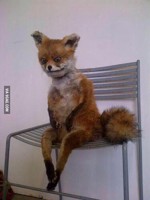 cb5ff65c0a0 Waking up early sitting on the edge of your bed like... - 9GAG