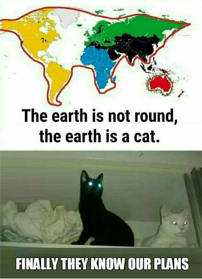 World map looks like tiny kitty trying to eat aussie 9gag world map looks like tiny kitty trying to eat aussie gumiabroncs Choice Image