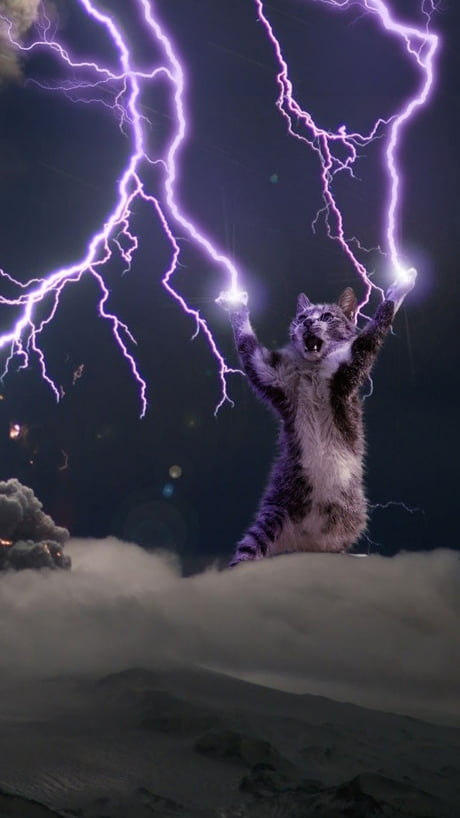 Lightning God Cat Wallpaper Requested Higher Resolution 9gag
