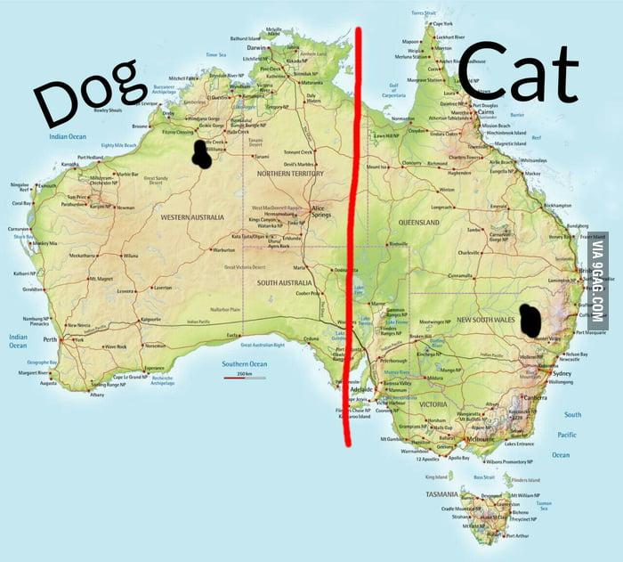Did you know australia looked like a cat and a dog when splitted did you know australia looked like a cat and a dog when splitted gumiabroncs Images
