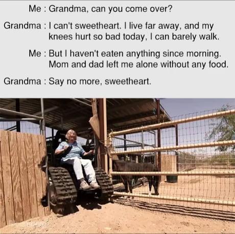 Granny to the rescue