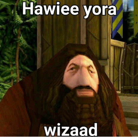 best 30 you are a wizard harry fun on 9gag