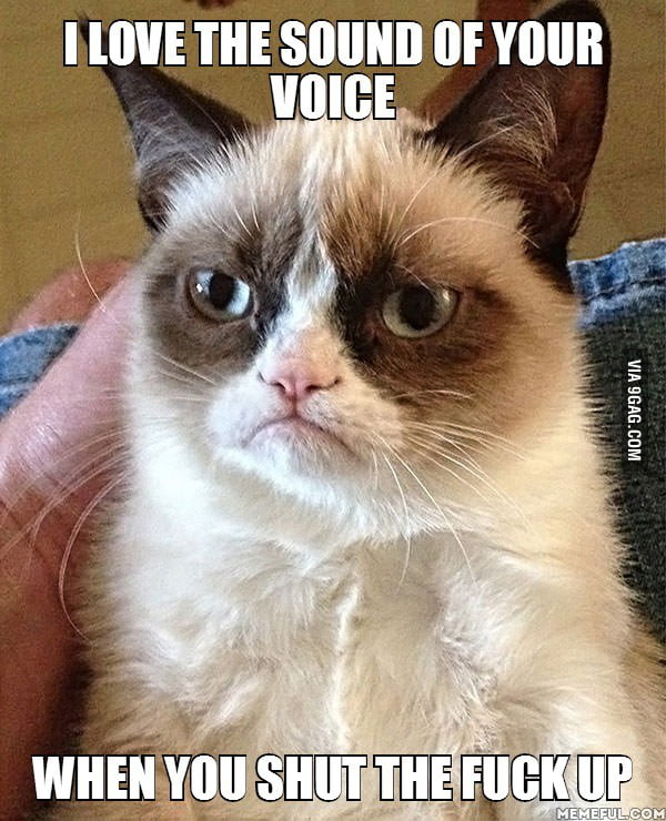 I Love The Sound Of Your Voice 9gag