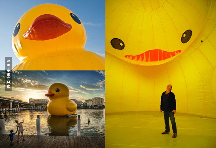 Inside the most famous Rubber Duck.