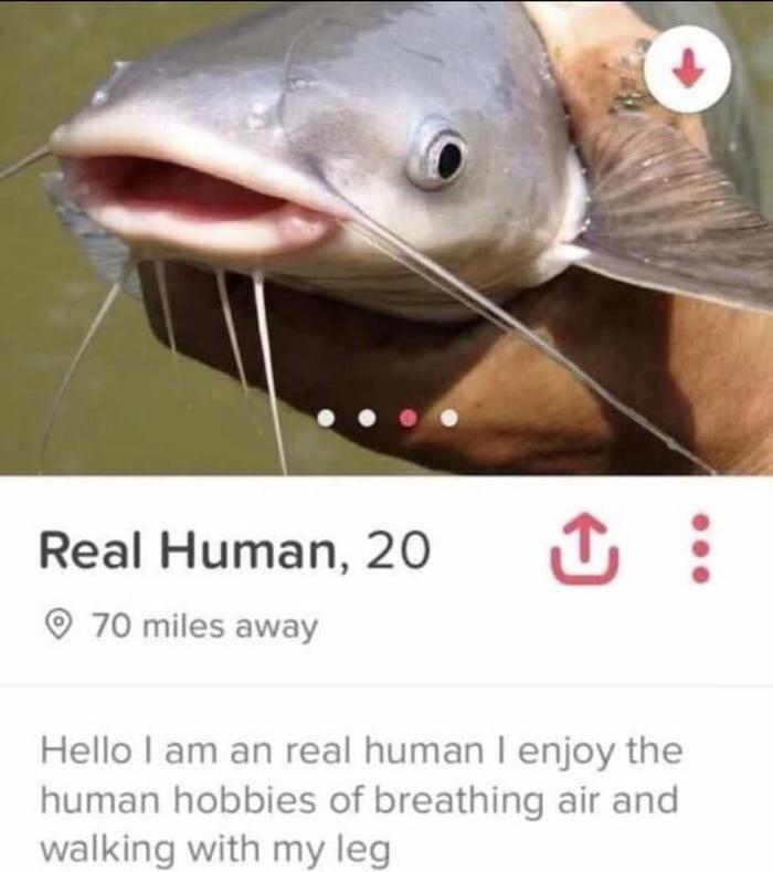 i think i ve been catfished