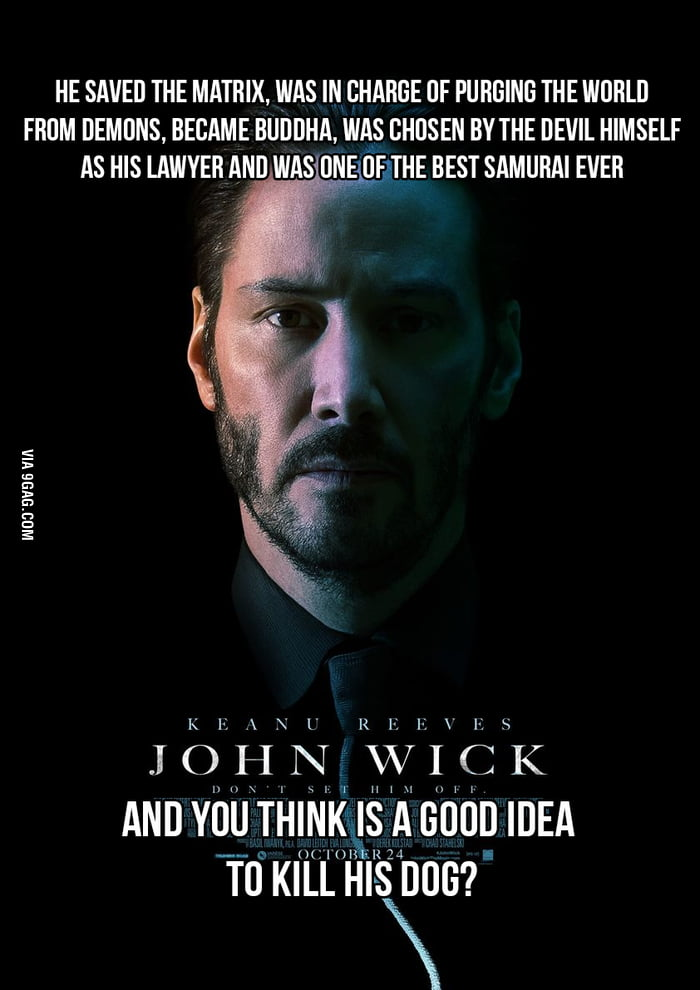 my thoughts after watching the john wick trailer   9gag