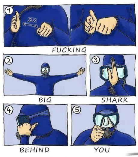 In case you wanna go diving