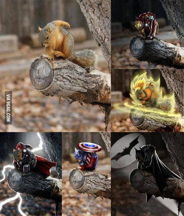 The best Squirrel ever