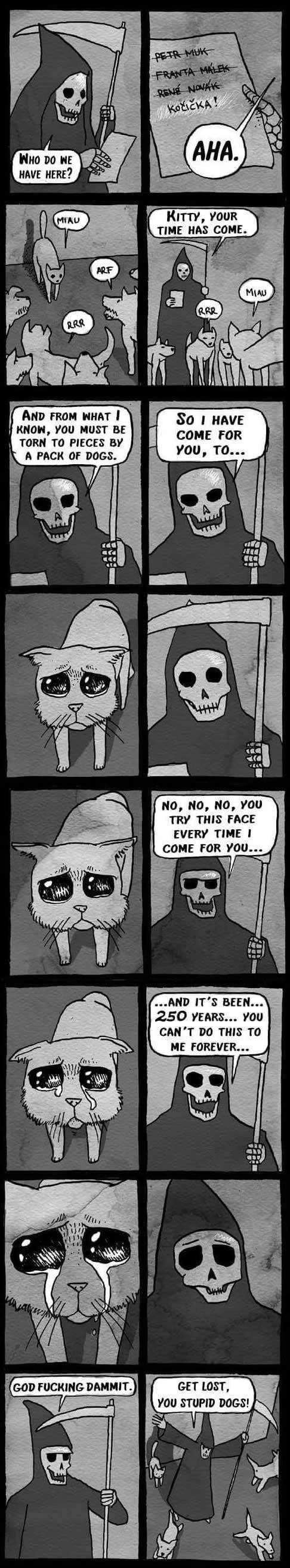 He greeted death as an old friend 9gag he greeted death as an old friend m4hsunfo