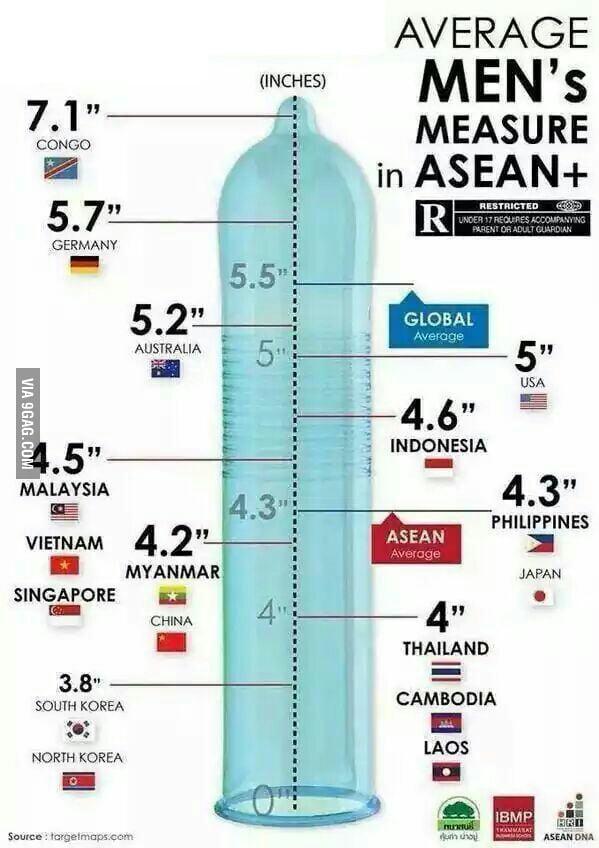 dick a length Average around
