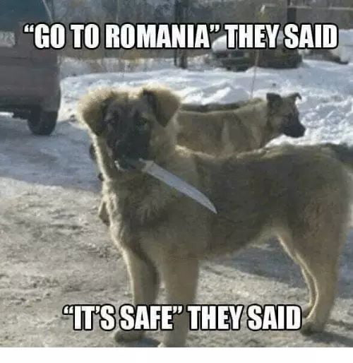 aq1EbEZ_700b best 30 romanian fun on 9gag