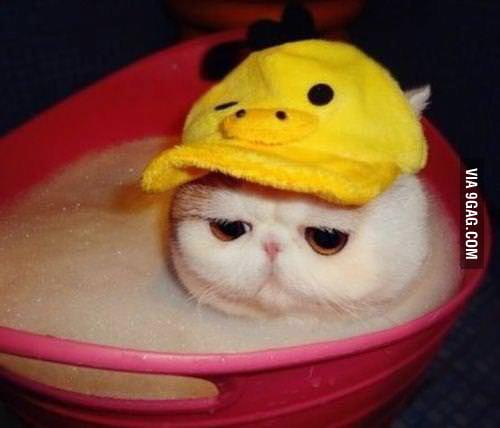 I love taking bath..