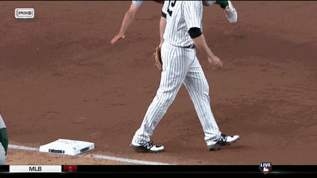 Professional Baseball Slide