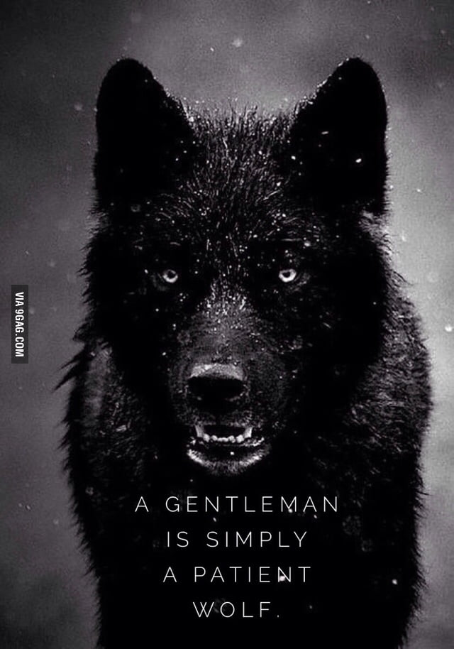 """For those ladies who have friends who are """"gentlemen"""""""