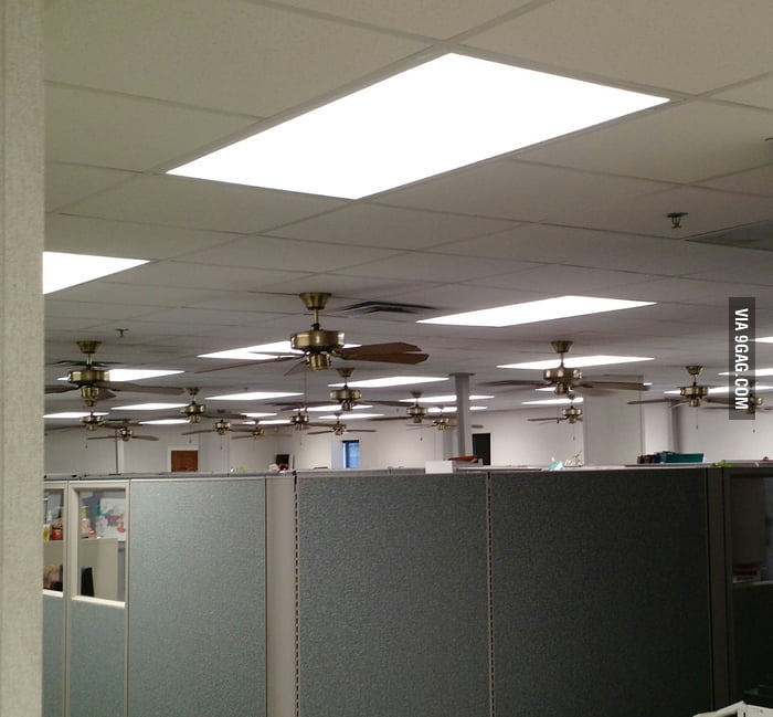 This Office Has A Lot Of Ceiling Fans