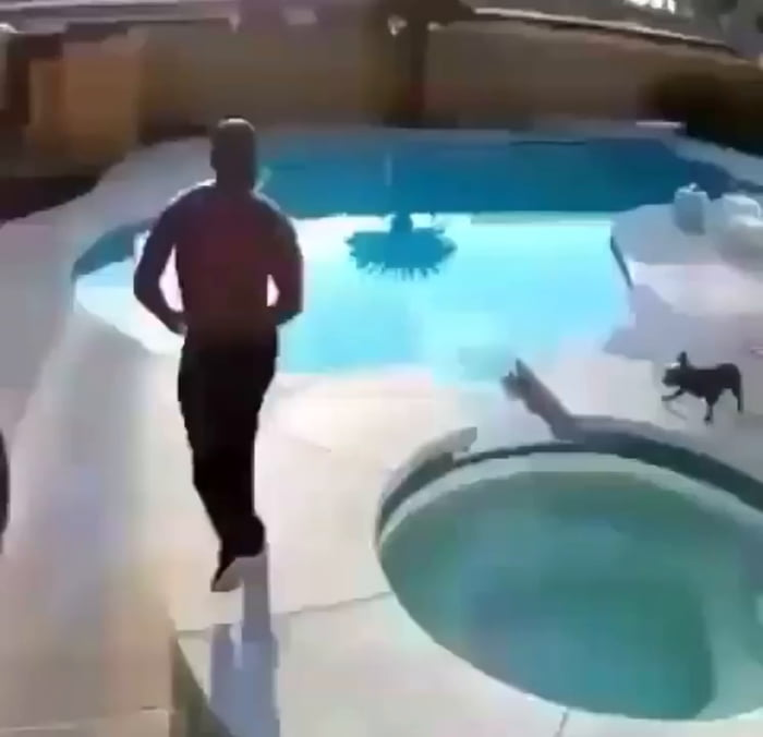 Don't assume all dogs can swim! This man's quick reaction probably saved his dog's life.