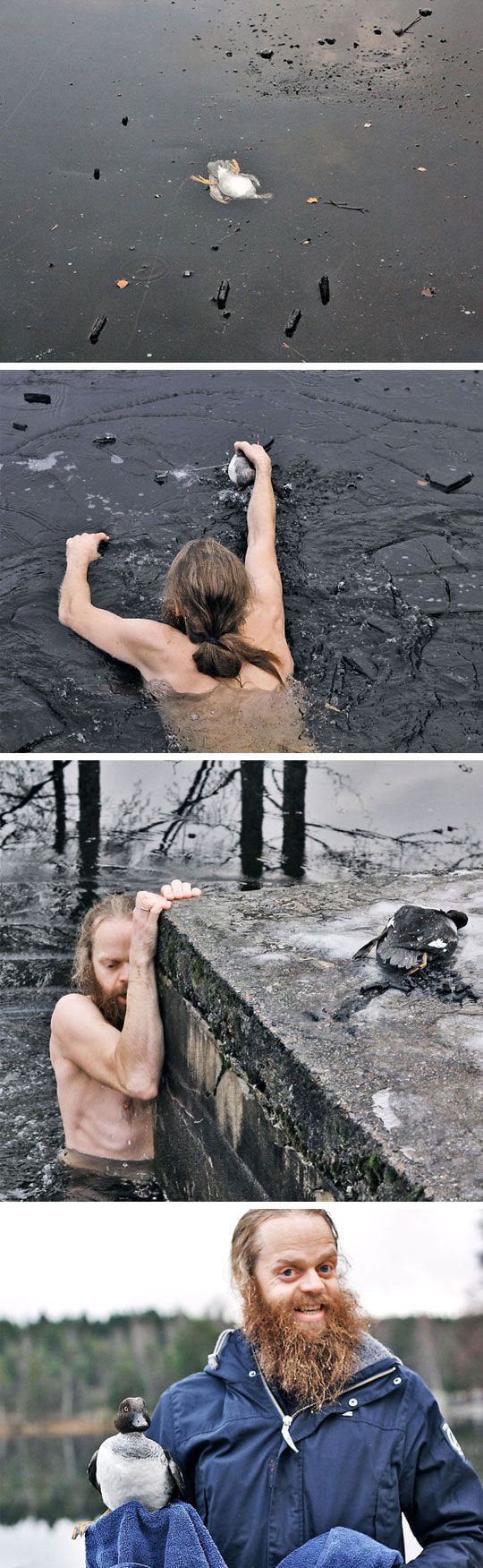 Swimmer dives into frozen lake to rescue duck trapped bottom-up in the ice