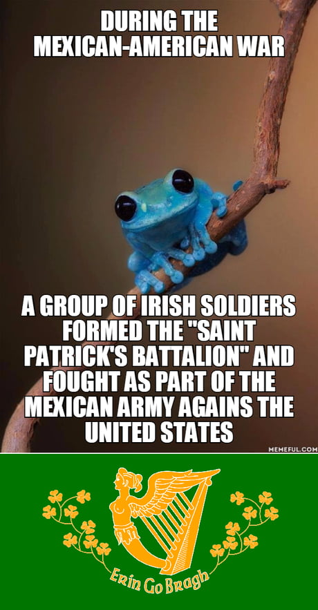 A little history of Ireland, Mexico and the United States (Sorry for being late for the San Patrick Day).
