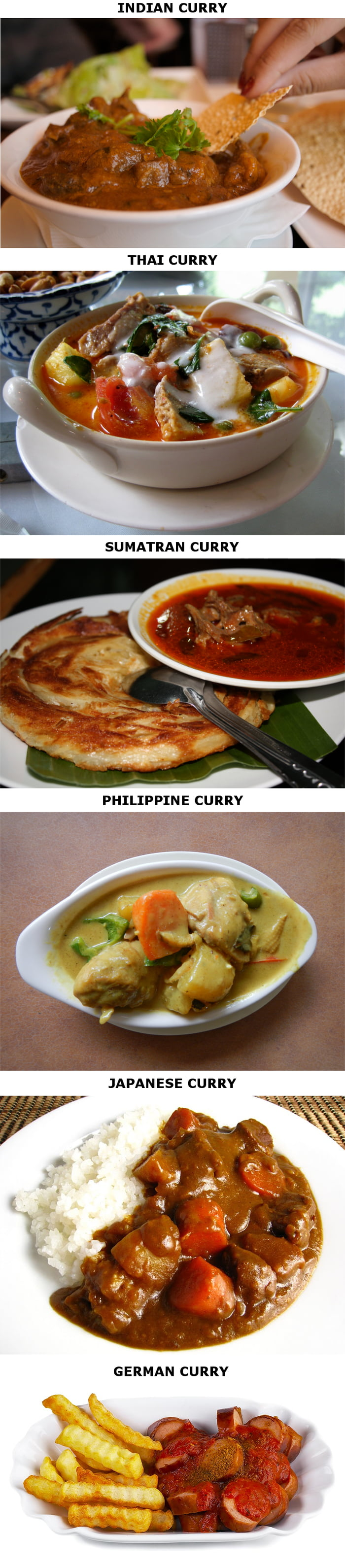 Curries from around the world