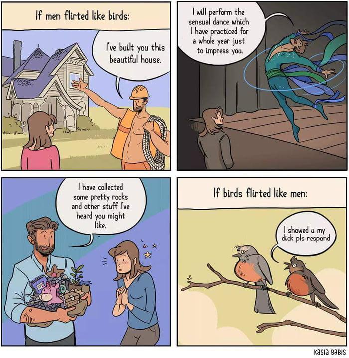 If men flirted like birds (by Kasia Babis) - 9GAG