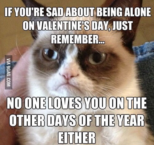 If You Are Sad About Being Alone On Valentineu0026#039;s Day.