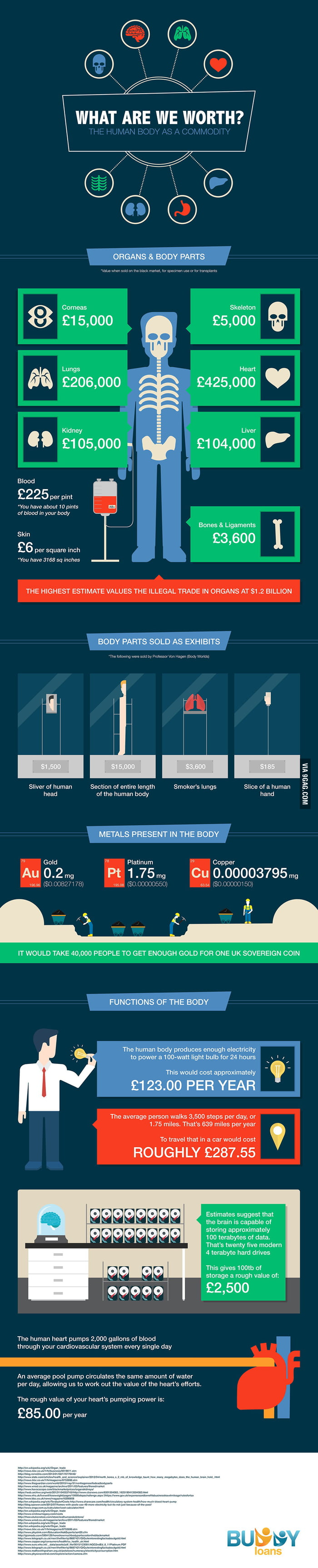 how much is the human body worth? - 9gag, Muscles